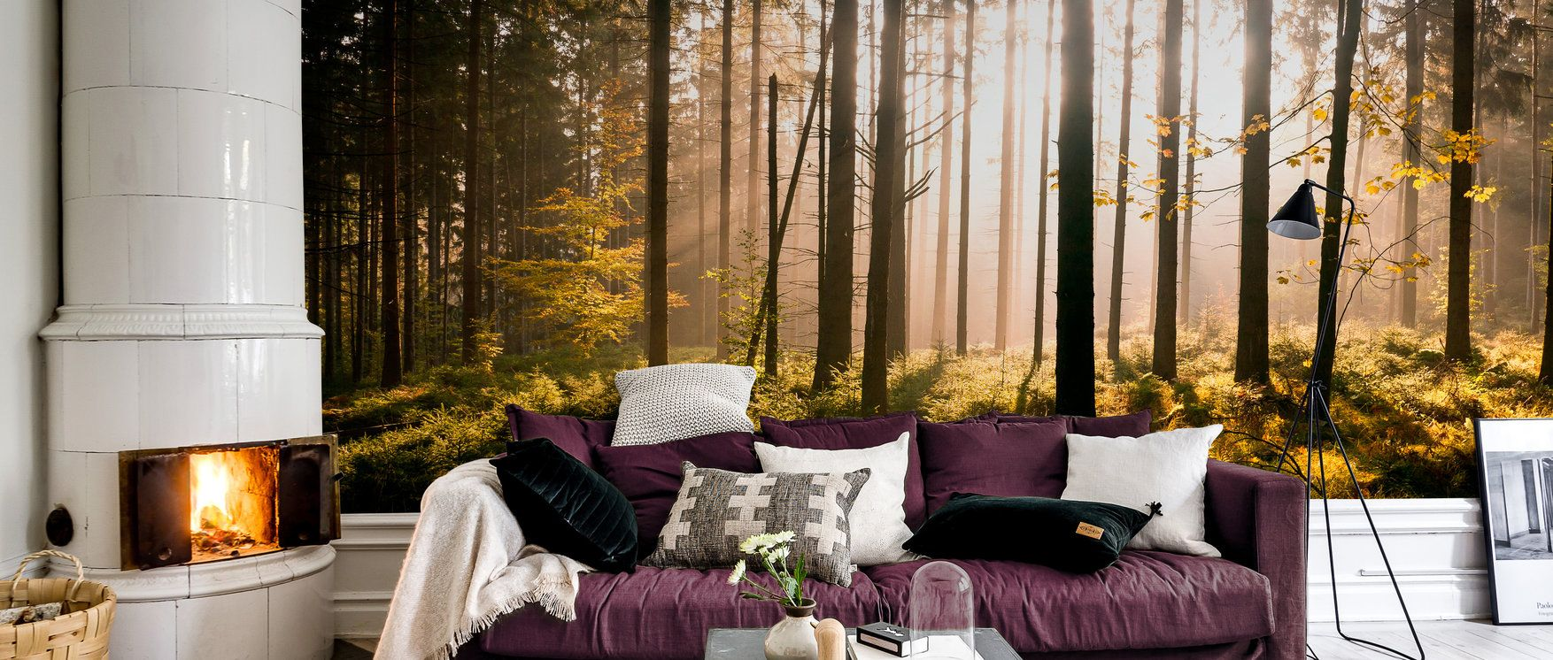 Fall Forest with Sunrays – affordable wall mural – Photowall