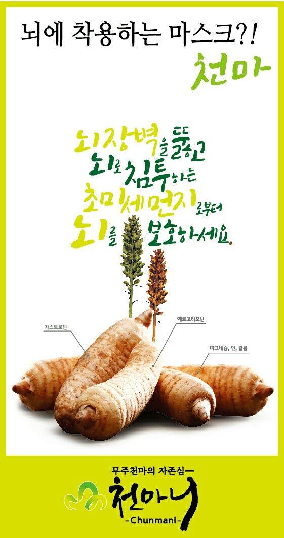 천마니 발효엑스포 부스현수막