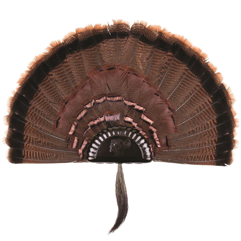 Park Art|My WordPress Blog_How To Mount A Turkey Fan Yourself