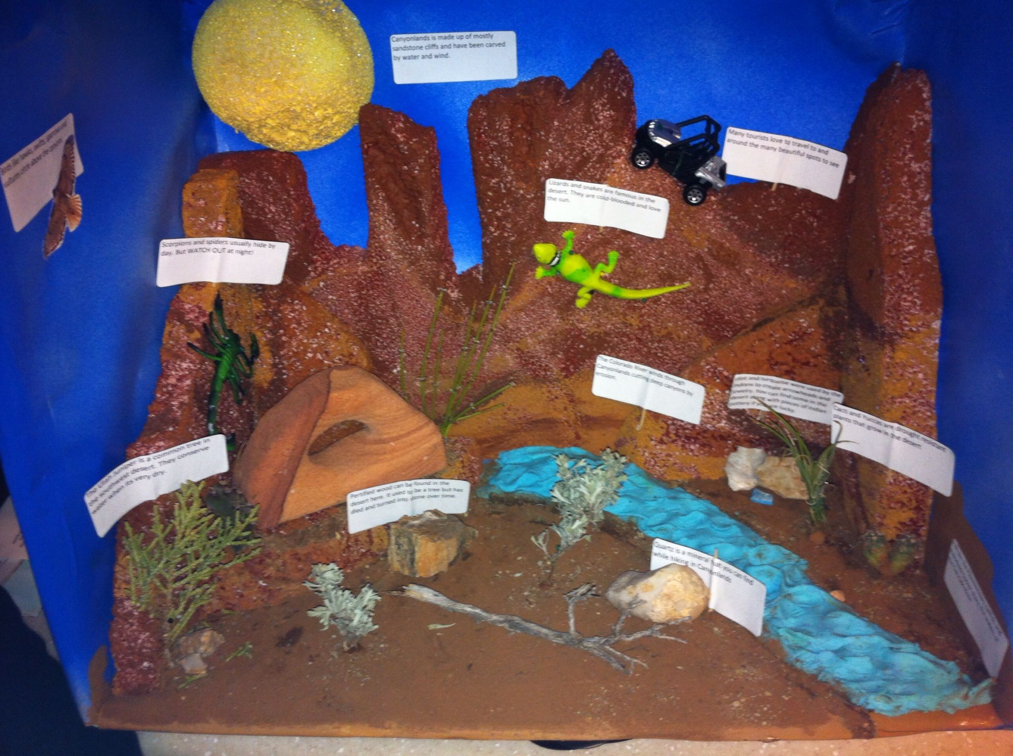 Canyonlands desert diorama school project For The Kids