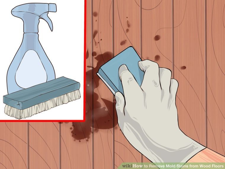 Remove Mold Stains From Wood Floors Remove Mold Stains