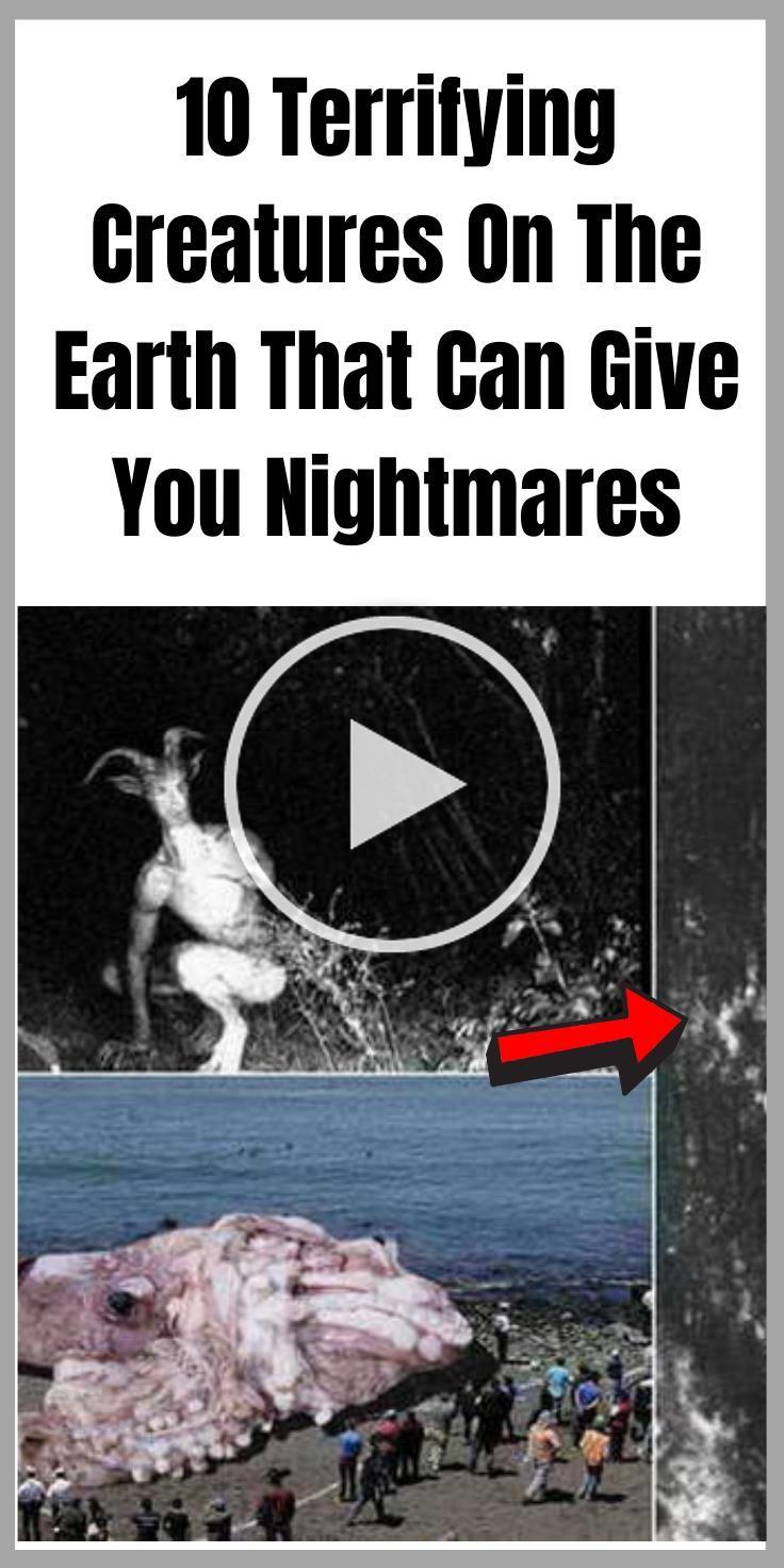 nightmares quotes | nightmares facts | nightmares aesthetic | nightmares art | n...