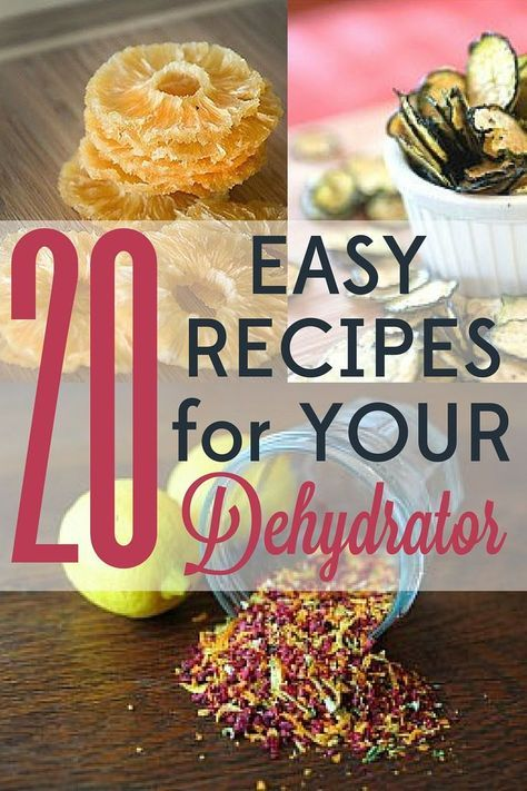20 easy recipes to make with your food dehydrator dehydrator food these 20 easy dehydrator forumfinder Gallery