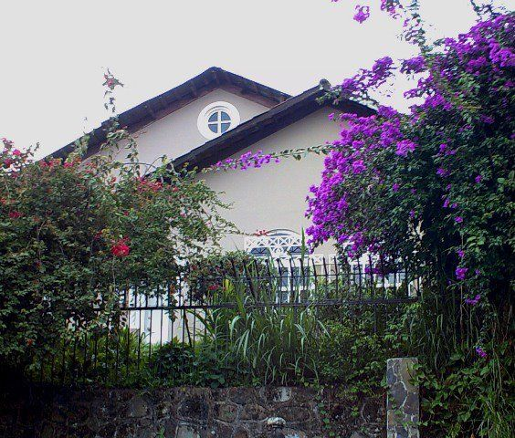 Casas Bº Amón. De San José Histórico y Elegante