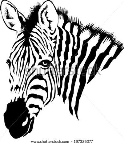 Zebra Head Stock Vectors Vector Clip Art