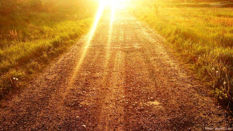 主日經課:復活期第四主日.「多馬對他(耶穌)說:『主啊,我們不知道你去哪裏,怎麼能知道那條路呢?』耶穌對他說:『我就是道路、真理、生命。』」約翰福音14:5-6 #cwwhk #tph #taosheng #信徒箴言 #道聲