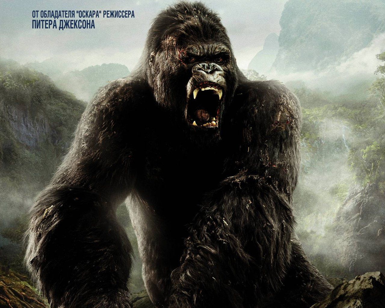 King Kong HD Wallpapers Backgrounds Wallpaper