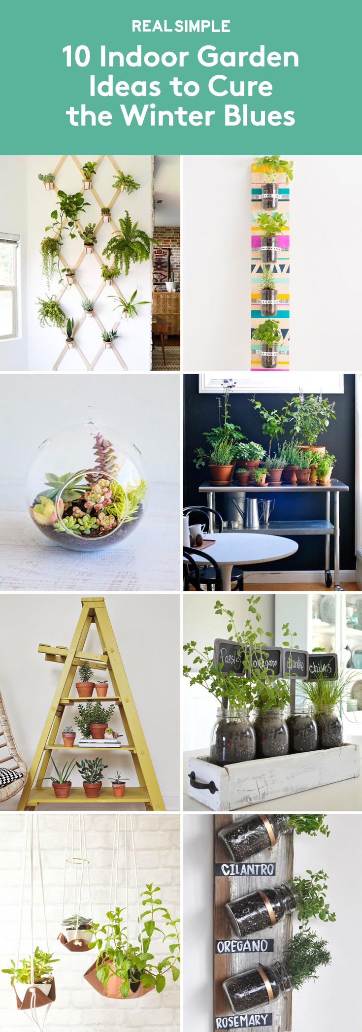 10 indoor garden ideas to cure the winter blues gardens garden