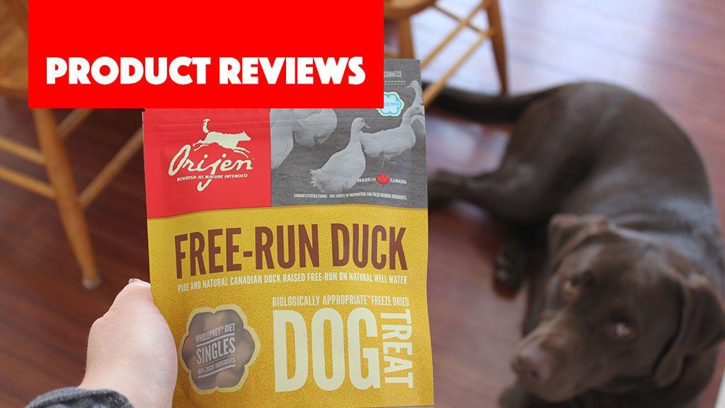 Orijen Free Run Duck Dog Treat Dog Treats Dogs Running
