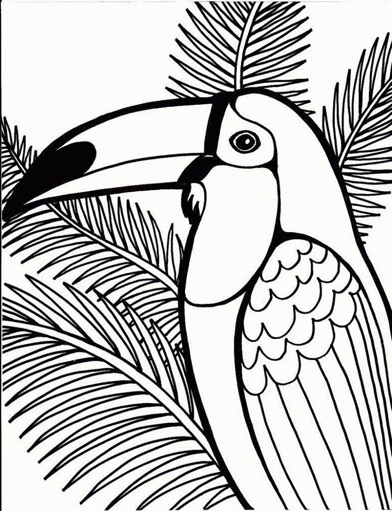 - Coloring Pages For Seniors Coloring Pages For Seniors In 2020 Animal  Coloring Pages, Bird Coloring Pages, Dinosaur Coloring Pages