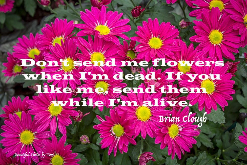 Don T Wait Until I M Dead To Show You Care My Flower Like Me