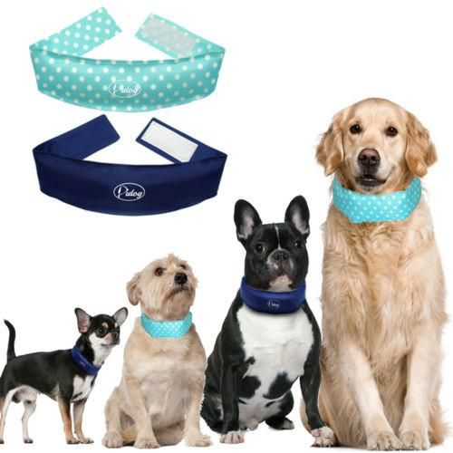 Special Promotion 35 Off Extra 10 Discount On Orders Over 40 Use Over40 Discount Coupon Code On Checkout Page Weat Cool Dog Collars Pets Your Dog