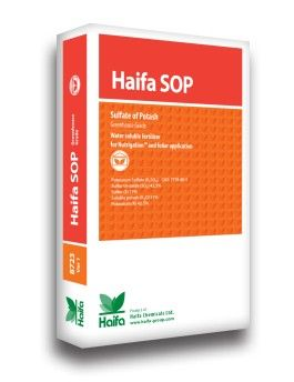 Haifa Sop  Haifa Products    Haifa