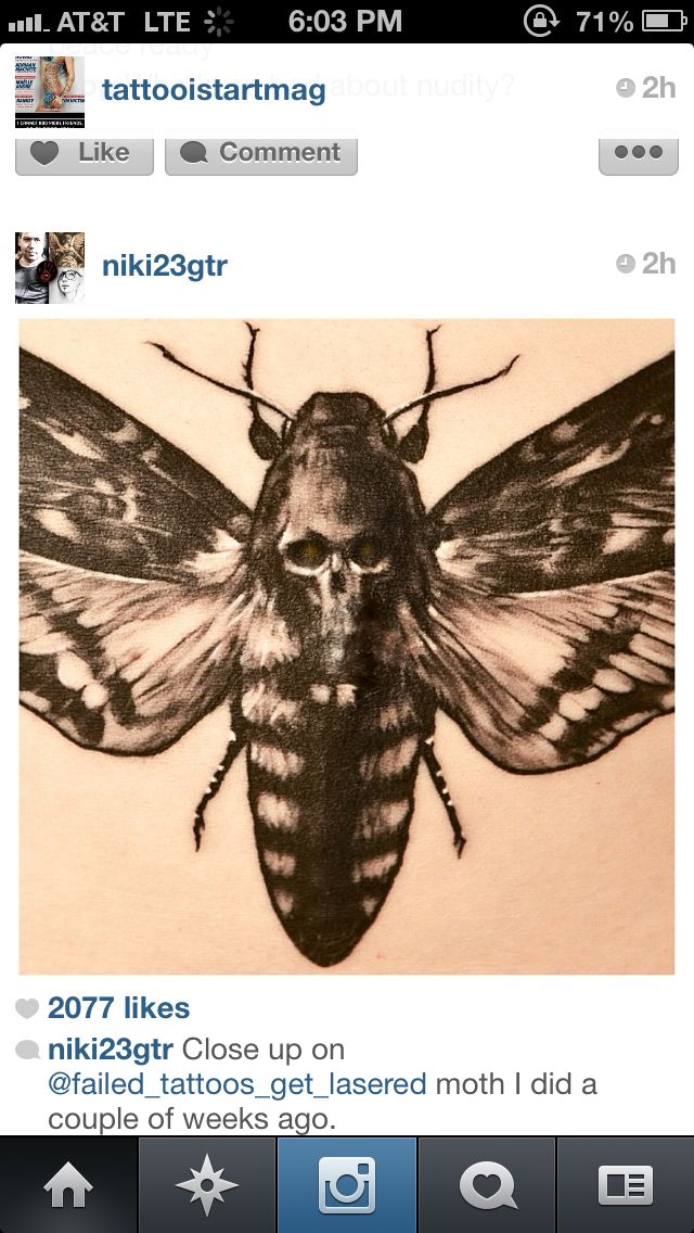 Sick Moth Tattoo I Saw On Instagram Death Head Moth Tattoo Moth Tattoo Moth Tattoo Design