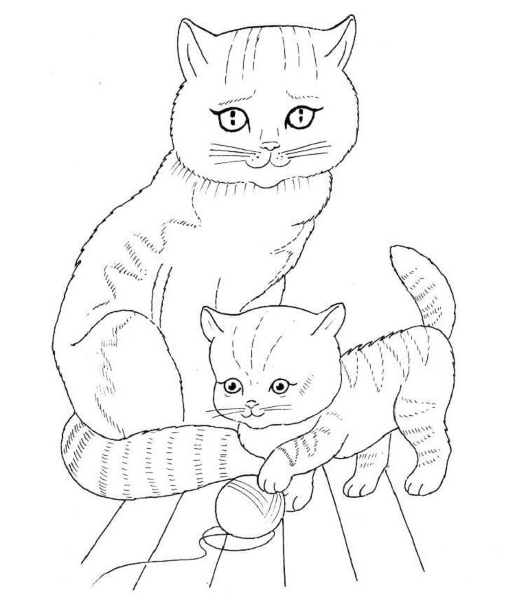 Cat Mother And Kittens Coloring Pages Cat Coloring Page Kittens Coloring Kitty Coloring