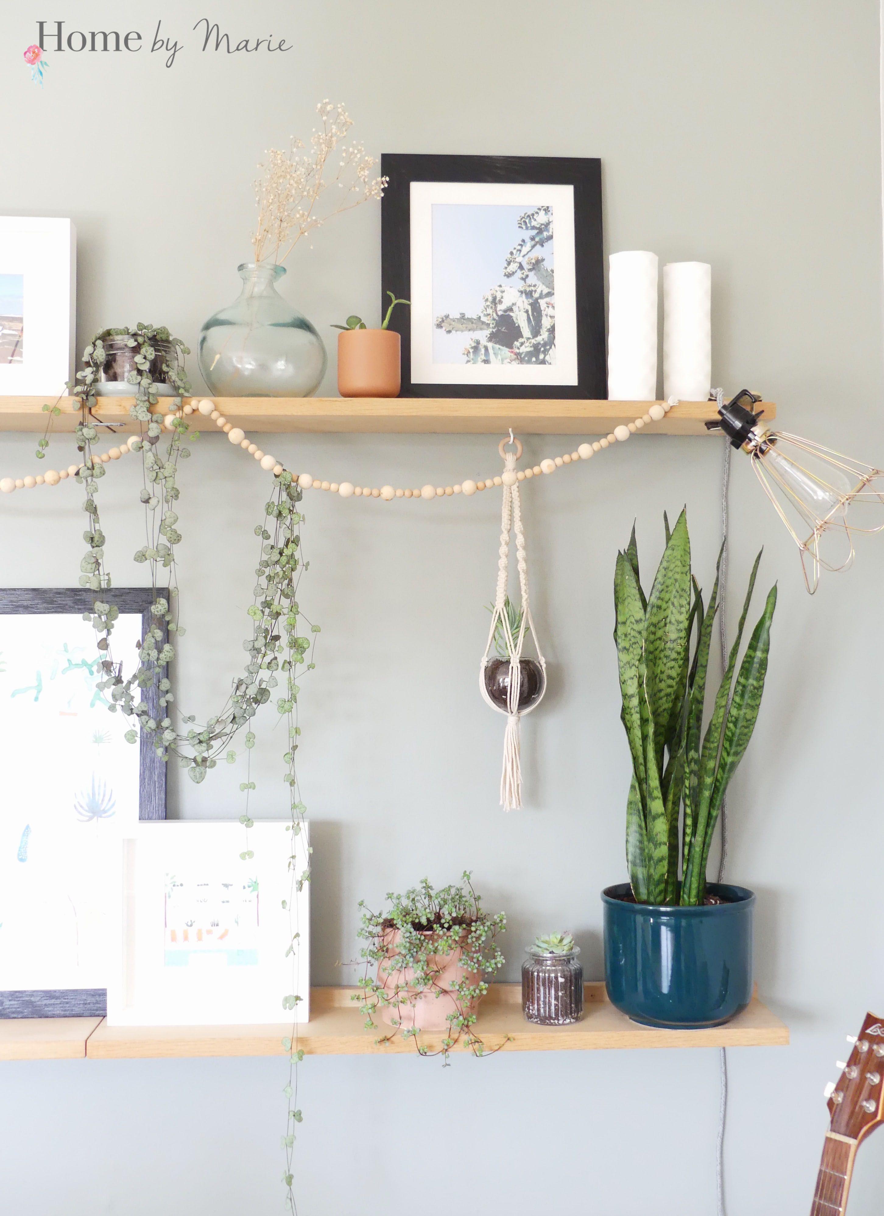 19 astuces pour décorer avec des plantes  Decoration plante