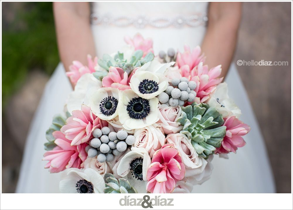Anemone Succulent Ginger Bouquet San Antonio Photographers Diaz Weddings Zoo