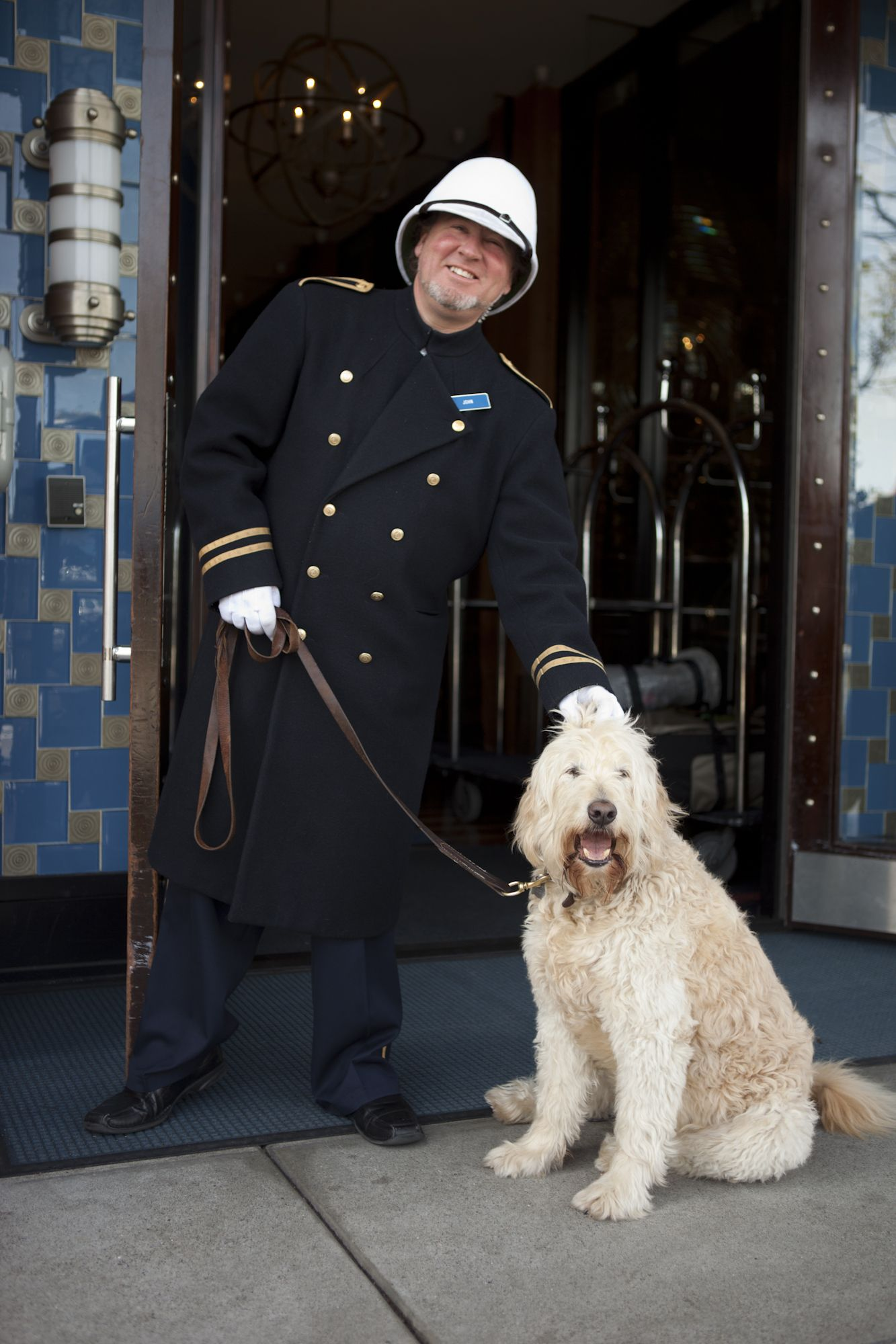 Looking For A Pet Friendly Hotels In San Francisco The Argonaut Is