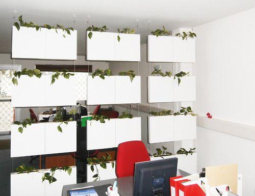 Tabiques separadores de ambientes cortinas vegetales y - Cortinas para oficinas ...