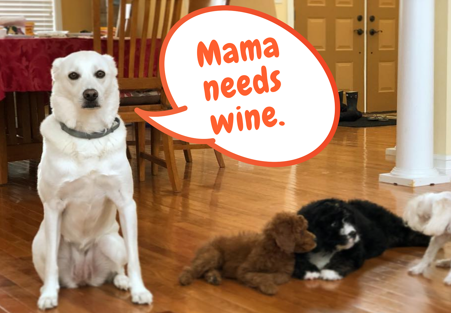 10 Dogs Who Are Just Plain Exasperated With Their Offspring Dogs Puppies Pets