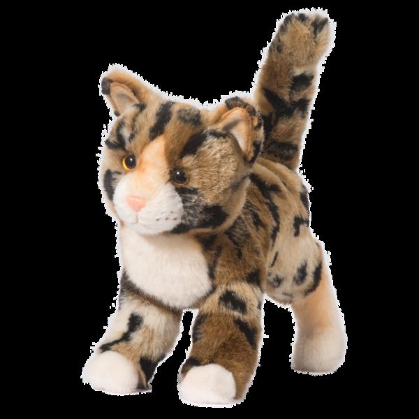 Tashette Bengal Cat Bengal kitten, Cat ages, Animals