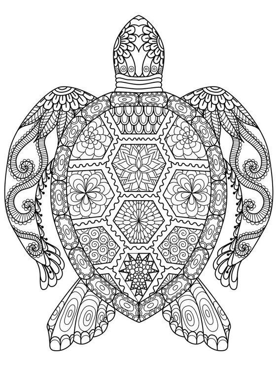 Adult Coloring Pages: Turtle | My Style | Pinterest | Adult coloring ...
