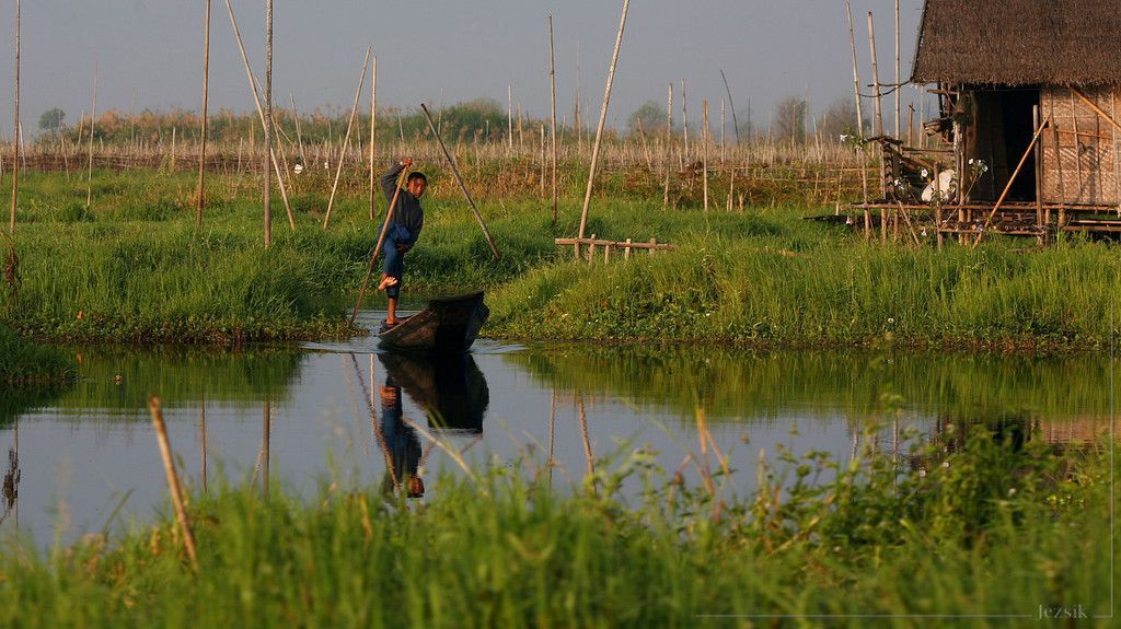 Floating gardens on Inle Lake  http://earth66.com/agriculture/floating-gardens-inle-lake/