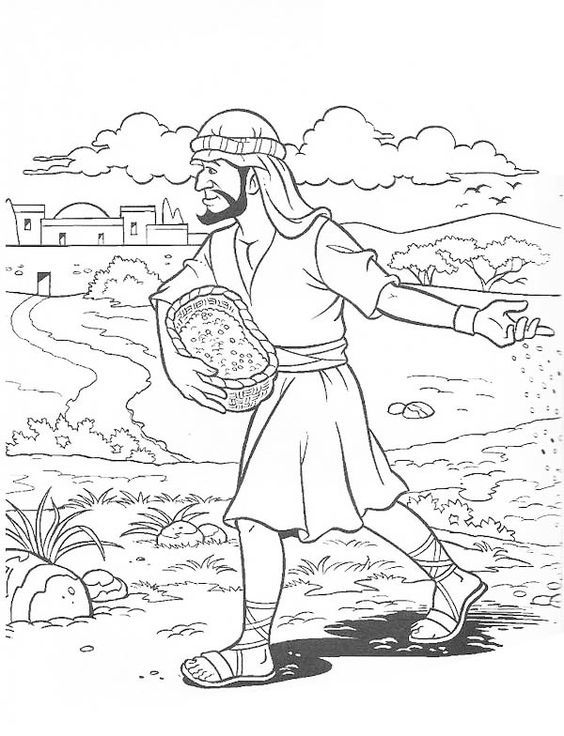 Parable Of The Soils Sower Sows The Seed Coloring Bible Parable Sower Sunday School Coloring Pages Parable Of The Sower For Kids Bible Coloring Pages