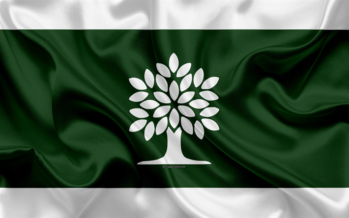 Download Wallpapers Flag Of London 4k Silk Texture Canadian City White Green Silk Flag London Flag Ontario Canada Art North America London London Flag Wallpaper Green Silk