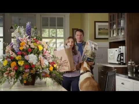 Chuck Wagon Dog Food Tv Commercial