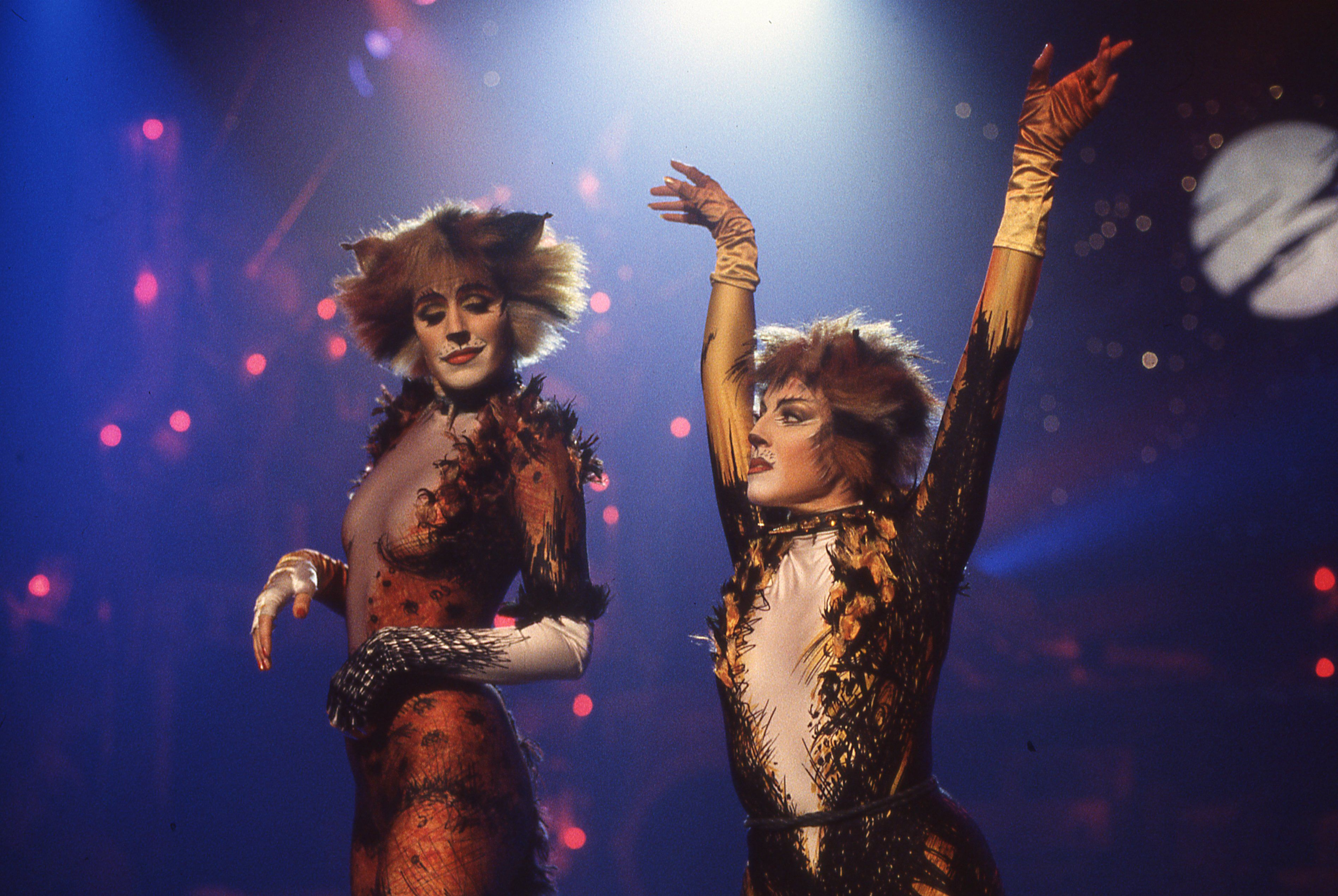 Cats On Screen Cats The Musical Cat Movie Musicals Jellicle Cats
