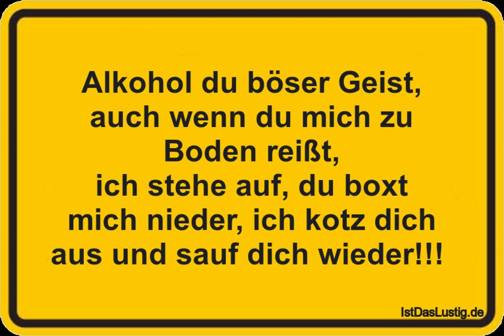 Lustiger Bilderspruch Alkohol Du Boser Geist Auch Wenn Du Mich Zu Bo Funny Quotes Quotes Funny