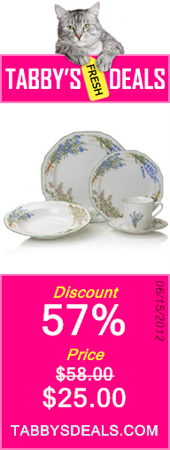Mikasa Botanical Bouquet 5-Piece Place Setting $25.00