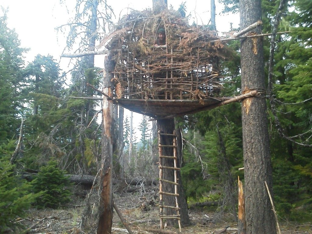 This is amazingly close to the tree fort I built in the ...