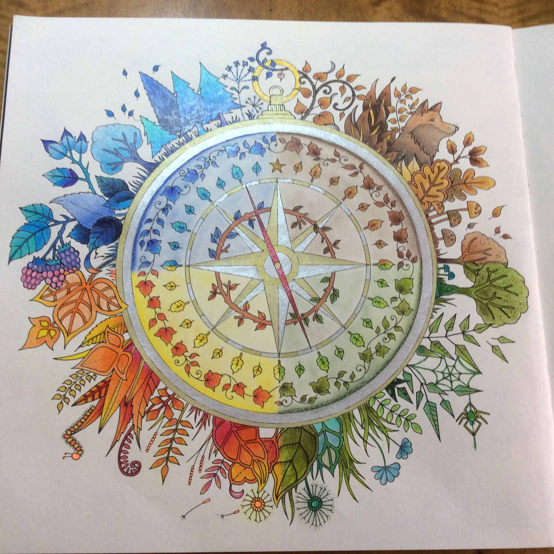 Joanna Basford Floresta Encantada Bssola Coloring BooksAdult ColoringColouringJohanna