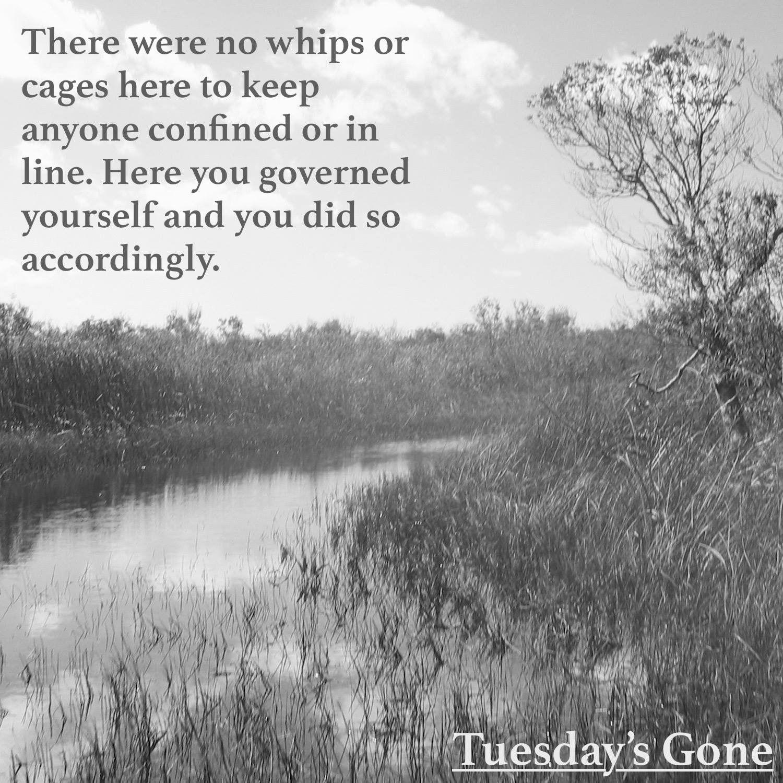 Tuesday S Gone Tuesday Tuesdaysgone Jameswiindale