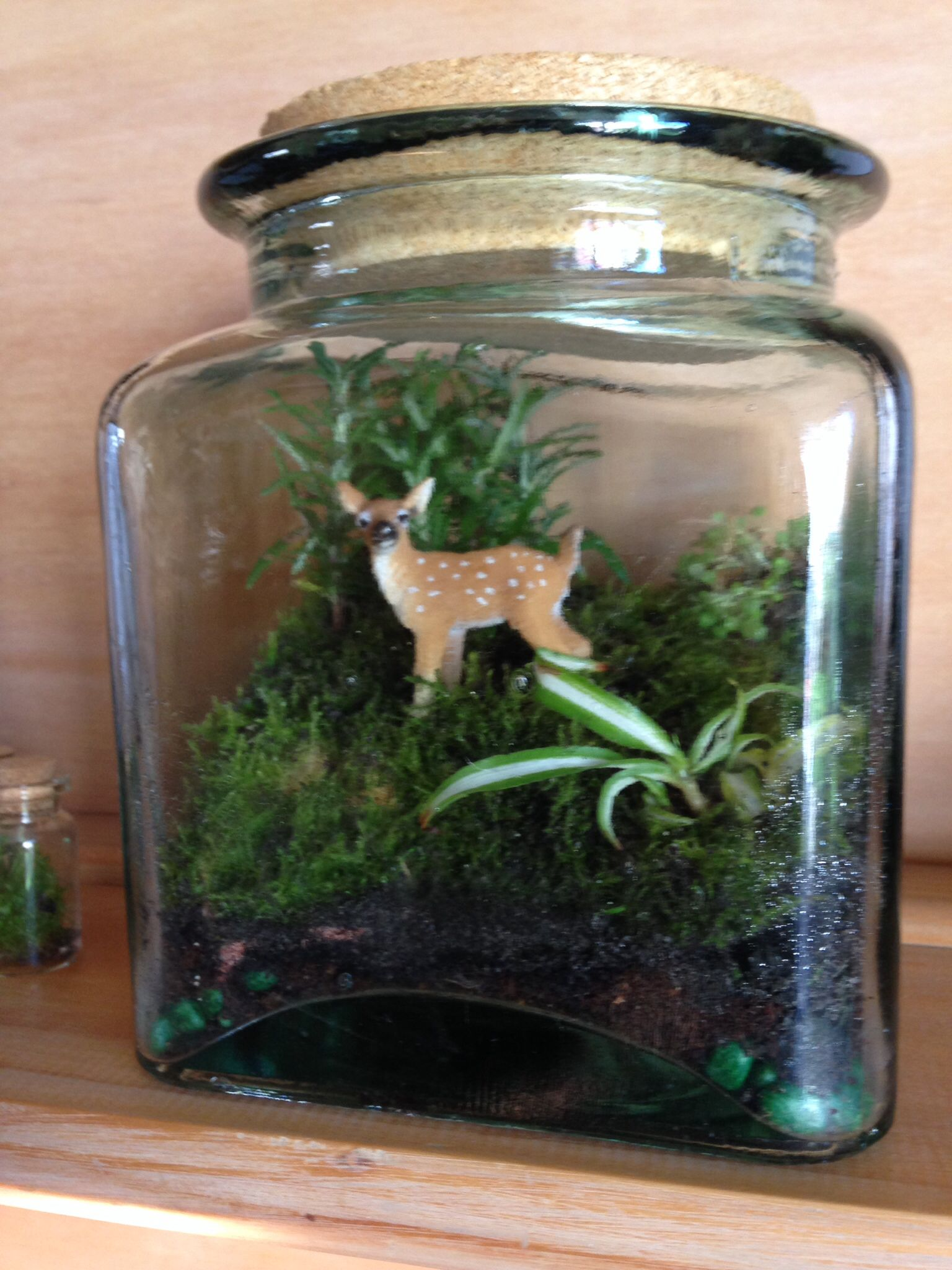 Little Deer In A Cookie Jar Terrarium Moss For Grass,