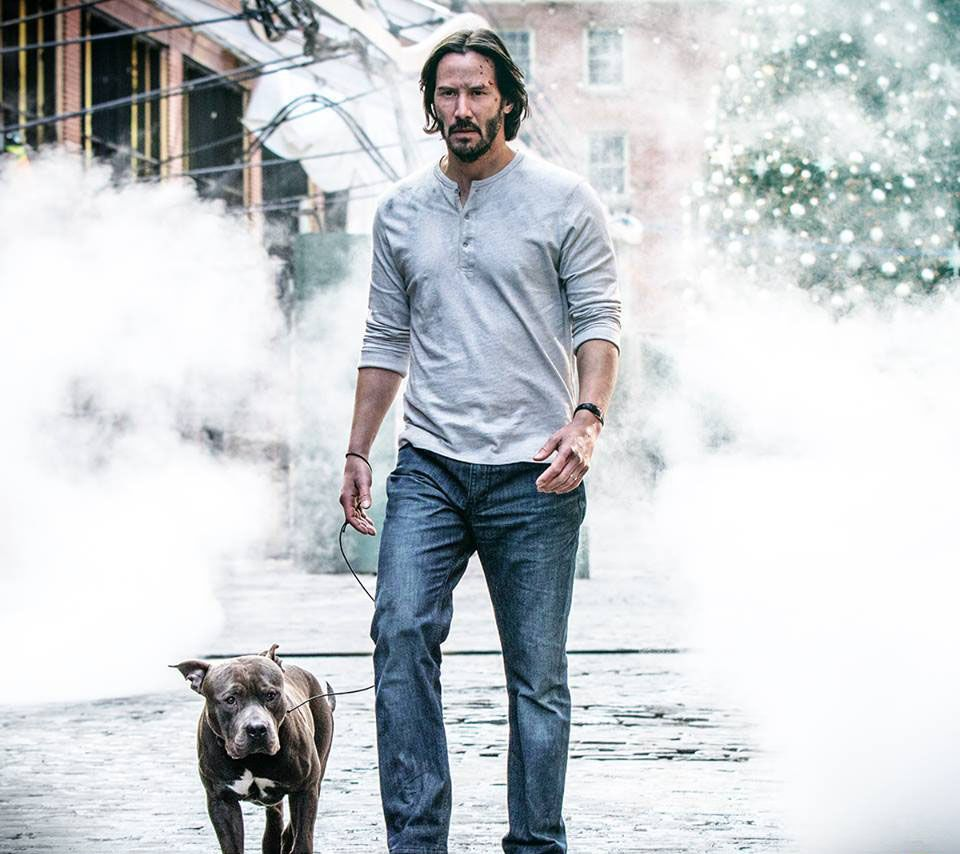John Wick 3 Is Happening And Officially Gets A Summer 2019 Release