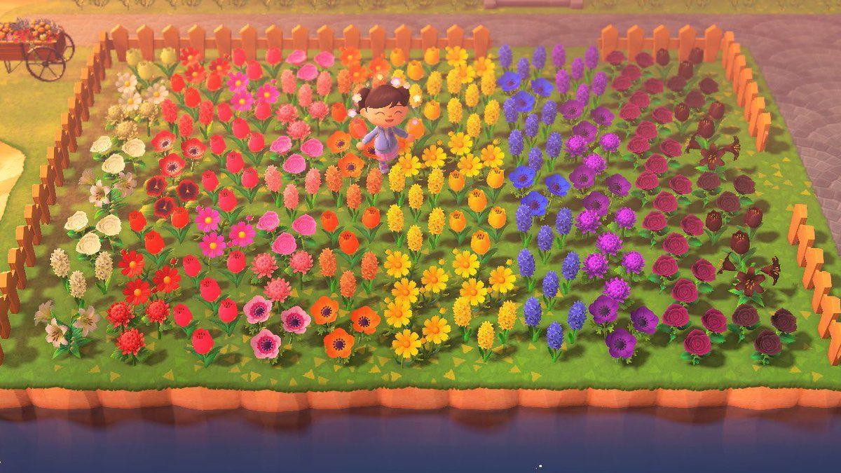 Acnh Rainbow Flower Garden