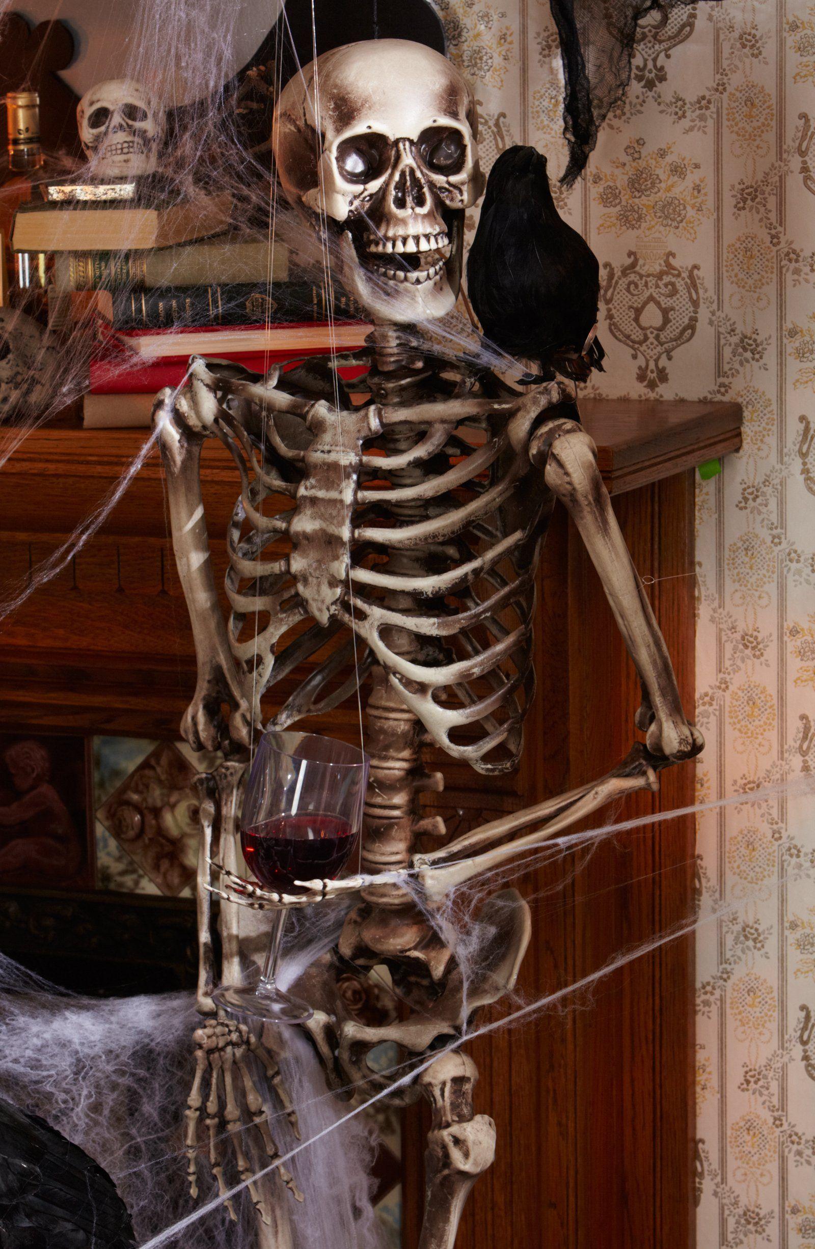 lifesize posable skeleton | halloween | pinterest | halloween
