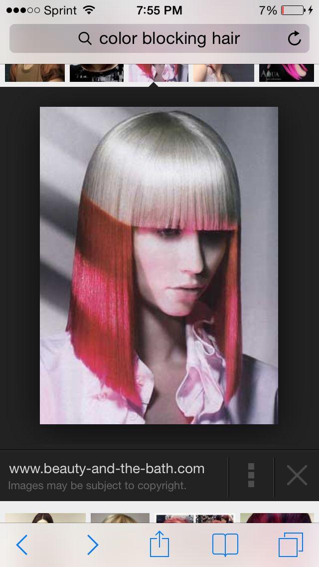 Hair Color Section Color Blocking Beta 1 Portfolio Pinterest
