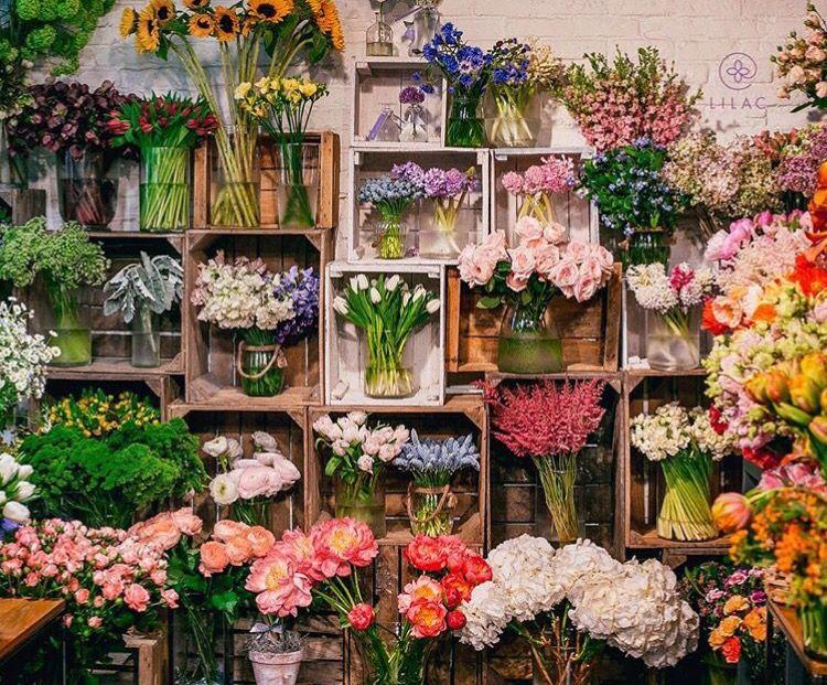 Flower Shop Flower Shop Decor Flower Shop Interiors Flower Shop Design