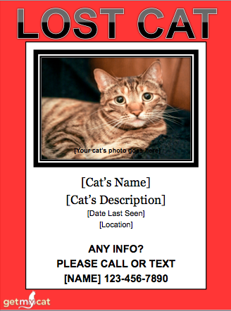 Getmycat Missing Cat Poster Template Missing Cat Poster