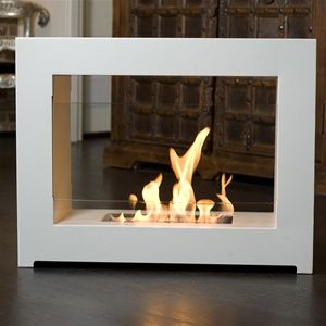 So Many Interesting Applications Of Bio Fuel Burning Fireplaces