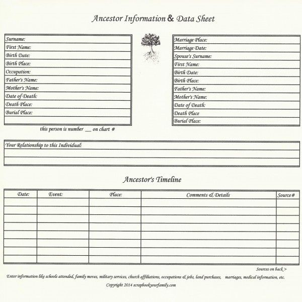 Our Roots u2013 Ancestor Data Timeline Chart A Genealogy - birth chart template