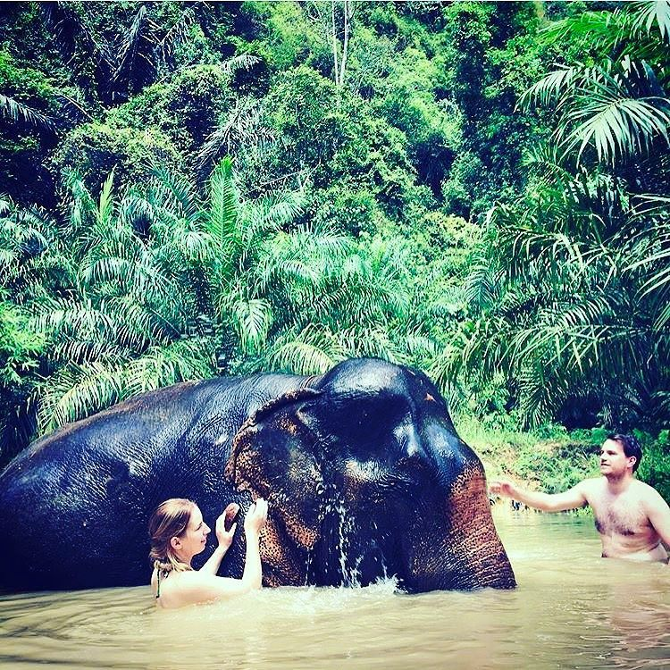 We're almost ready to announce the Thailand retreat and start letting you book your spot!! But for now you can start dreaming about how you'll get to give an elephant a bath  #travel #elephant #thailand #wanderlust #happiness #culture #bangkok #love #world #earth #onelove #eatclean #meditate #meditation #justdoit #yogi #traveling #gypsy #gypsysoul #wander  #explore #adventure #retreat #ocean #beach #beachbum #vibes #peace #seetheworld #yoga