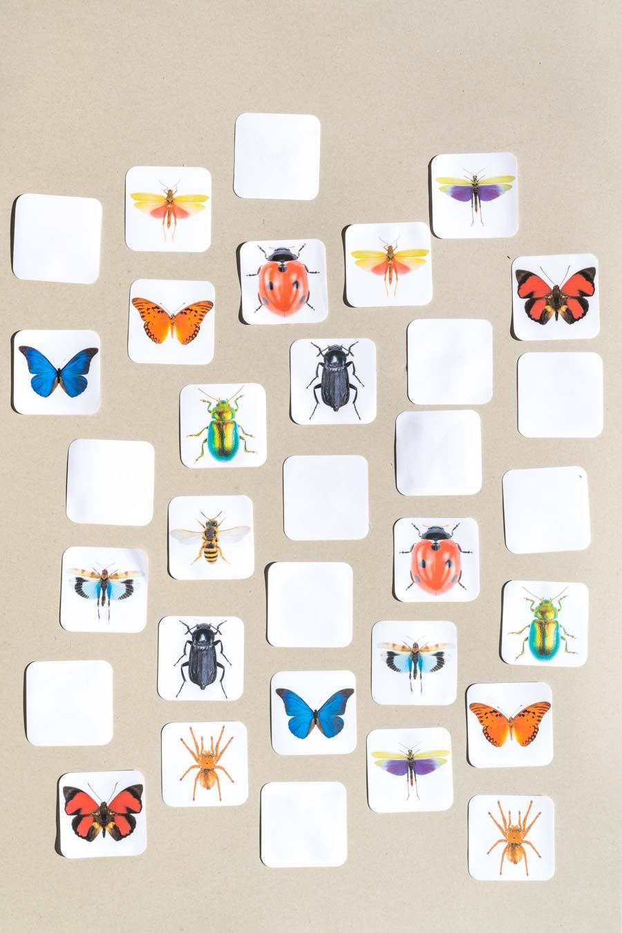 Spiele Schmetterlinge