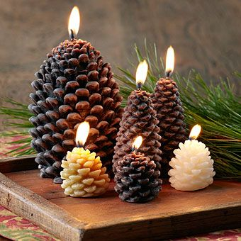 Pinecone Candle Collection   Candles U0026 Holders   Stonewall Kitchen    Specialty Foods, Gifts,