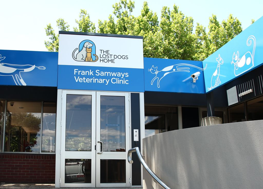 The Lost Dogs Home Frank Samways Veterinary Clinic Veterinary Clinic Clinic Vet Clinics