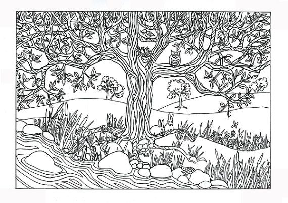 Adult Coloring Page Nature Pages For Adults 0 Kids Free